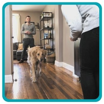 Dog running from one owner to the other in a hallway
