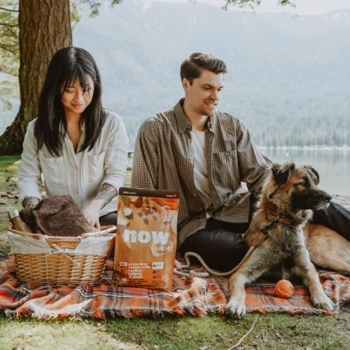 Woman and man sitting with dogs outdoors while the dog eats food