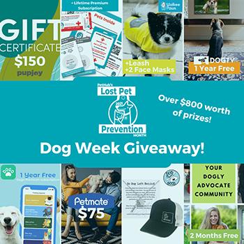 dog_week_giveaway_prizes